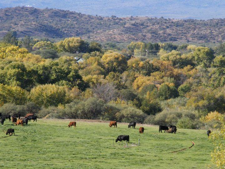220 S Bonito Ranch Loop Cornville AZ Home. Photo 1 of 9