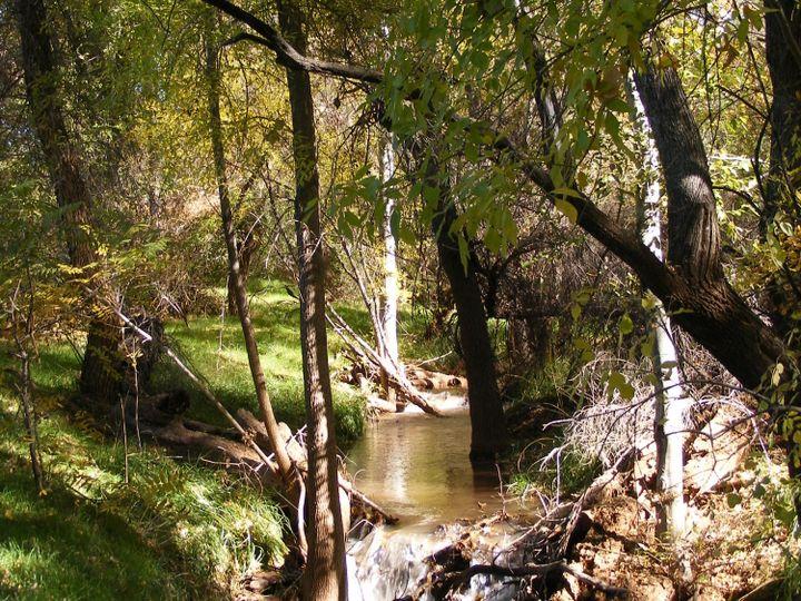 220 S Bonito Ranch Loop Cornville AZ Home. Photo 8 of 9