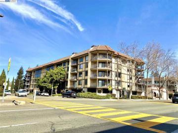 1132 Carpentier St unit #207, Peralta Creek, CA