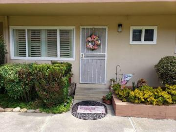 1367 Phelps Ave unit #3, San Jose, CA