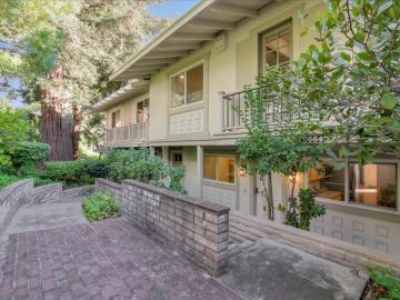 14664 Springer Ave, Saratoga, CA
