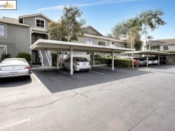 185 Lakeshore Ct, Marina Bay, CA