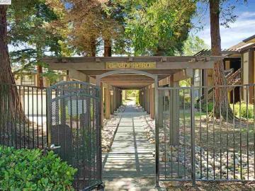 39139 Argonaut Way unit #210, Fremont Village, CA
