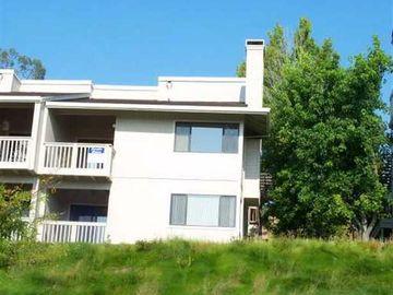 416 Brandywine Ln, Sun Vally Vineyd, CA