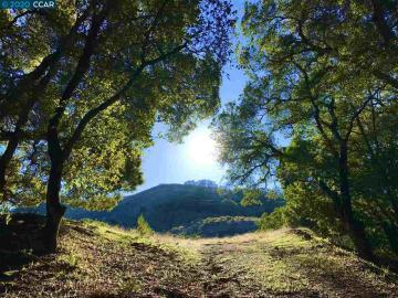 Bollinger Canyon Rd, Moraga, CA
