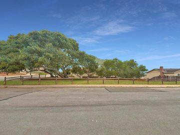 Oak St, Monterey, CA